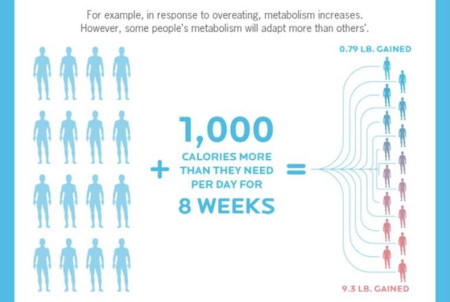 overeating-metabolism-weight-gain